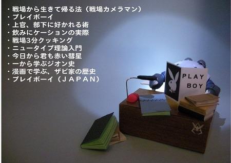 pm-sd-z.jpg